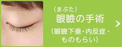 眼瞼(まぶた)の手術